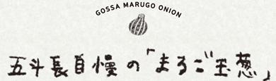 五斗長自慢の「まるご玉葱」